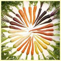 Aromaterapia - cenoura