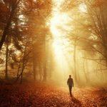 caminhar na natureza